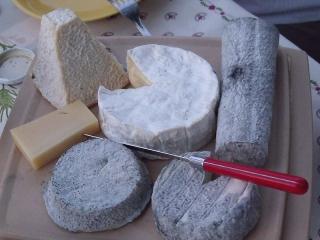 plateau-de-fromages